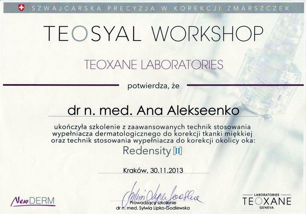 Teosyal Workshop certyfikat